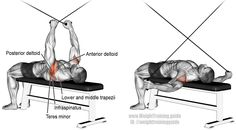 Supine cable reverse fly. An isolation pull exercise. Muscles worked: Posterior Deltoid, Lateral Deltoid, Infraspinatus, Teres Minor, Major and Minor Rhomboids, and Middle and Lower Trapezii.