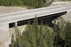 New Mt. Hunter Creek Bridge with wildlife underpass, built in Phase 3 #BCHwy1 #BC.