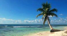 En este verano vive un #BestDay con tus amigos en el Caribe Mexicano✈   [Etiquétalos]