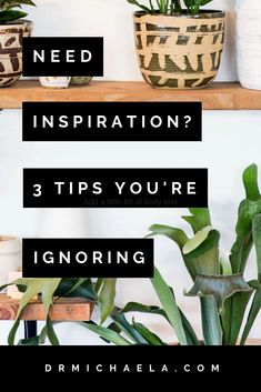 Are you struggling to come up with new and creative ideas for your health/wellness business? Do you want more inspiration but feel unsure how to get it? This post shares t he tips you're probably ignoring! Work From Home Business, Work From Home Tips, Creative Business, Business Tips, For Your Health, Health And Wellness, Storytelling Quotes, Content Marketing Strategy, Email Marketing