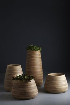 Tuber, planters made form Iroko wood. Designed by Haldane Martin. Wooden Planters, Large Planters, Outdoor Planters, Planter Pots, Wooden Containers, Wooden Vase, Planter Liners, Self Watering Plants, Wide Plank