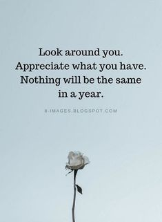 super Ideas for appreciate life quotes positivity Great Quotes, Quotes To Live By, Me Quotes, Motivational Quotes, Inspirational Quotes, Beauty Quotes, Wisdom Quotes, Appreciate Life Quotes, Appreciate What You Have