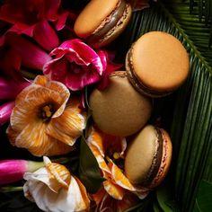 Pierre Herme JARDIN DU SULTAN COLLECTION 2014: Coffee, Orange blossom & Candied Orange