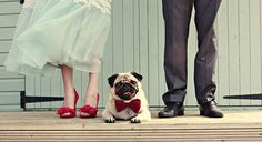 Wedding with Man's Best Friend 1  - This is my bf's dream.
