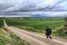 """The Camino de Santiago de Compostela ~ the difference between """"the life we live and the life we choose""""... would be an amazing journey...  (The Way)"""