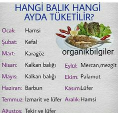 Balık Mevsimleri Greek Cooking, Cooking Time, Cooking Recipes, Healthy Recipes, Bread Shop, Fresh Fruits And Vegetables, Turkish Recipes, Fish Dishes, Fish Recipes