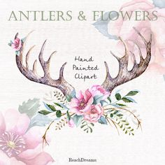 Hand drawn clip art flowers and stag horns от ReachDreams на Etsy