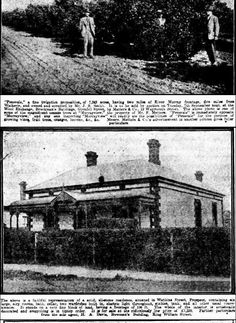 Mail (Adelaide, SA : 1912 - 1954), Saturday 28 August 1920, page 10