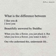 What is the difference between I like you & I love you...