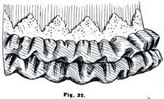 1895.  The Art of Dressmaking.  Figure 32 shows a double puff headed by points of heavy lace.  The puffs are cut on the bias and sewed upon the skirt from the bottom up, the upper one concealing the edge of the lower one.  The top edge of the upper puff is turned in and slip-stitched to position.  Length of material required for each puff, one and a half times around the skirt, or one and a half yards to make one yard of trimming.