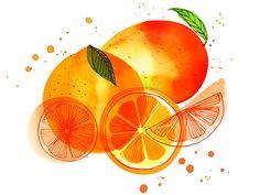 Orange Mango Splash | Margaret Berg Art & Illustration