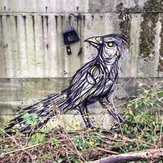 Dzia - Belgian Street Artist - 11/2014 - |\*/| #dzia #streetart