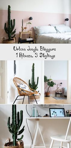 1 Pflanze, 3 Stylings – Ein Kaktus auf Reisen #dekorationWandDIY #dekorationWandBilder #dekorationWandWohnzimmer #dekorationWandBasteln #dekorationWandFlur Entryway Tables, Furniture, Home Decor, Bedroom, Living Room, Pink Walls, Indoor House Plants, Cactus, Wall Prints