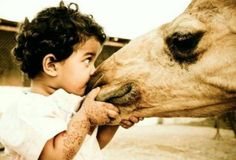 cute baby and a camel Mans Best Friend, Best Friends, Baby Camel, Desert Life, Sweet Kisses, Friends Forever, Beautiful World, Cute Babies, Africa