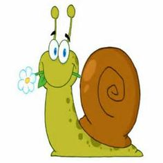 cartoon snail - Bing Images