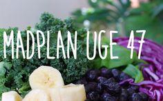 Paleolivet: Paleomadplan uge 47. Masser af ideer til sund mad hele ugen.