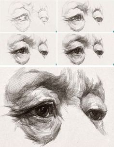 Secrets Of Drawing Realistic Pencil Portraits - Discover The Secrets Of Drawing Realistic Pencil Portraits Drawing Lessons, Life Drawing, Figure Drawing, Painting & Drawing, Drawing Of An Eye, Drawing Reference, Anatomy Reference, Anatomy Drawing, Anatomy Art