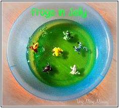 Very Messy Mummy: Frogs in Jelly Frog Activities, Therapy Activities, Infant Activities, Frog Crafts, Messy Play, Toddler Play, Sensory Play, Frogs, Jelly
