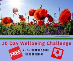 10 Day Challenge, Counselling, 10 Days, Trauma, Helping People, Kindle, February, Challenges, Romance