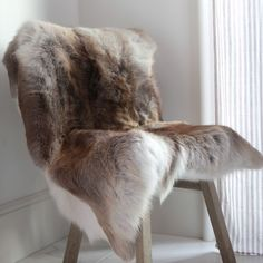 Buy Fur Pelt Throw Over Danish Modern Chairs  http://www.ebay.com/itm/Beautiful-Arctic-Reindeer-throw-skin-No-Legs-fur-pelt-taxidermy-27417-/371968066987
