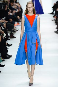 One of my favorite looks from Christian Dior Fall 2014 Ready-to-Wear (Worn by Bonnie Wright)
