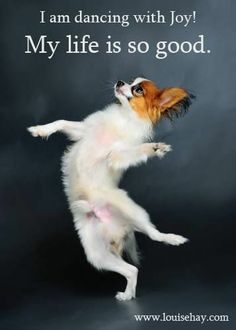 My life is SO GOOD! Louise Hay #affirmation #quote