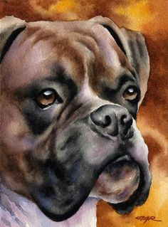 Boxer Puppy Art Print Sepia Watercolor by Artist DJR