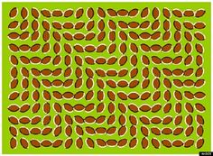 10 Optical Illusions That Will Blow Your Mind (PHOTOS)