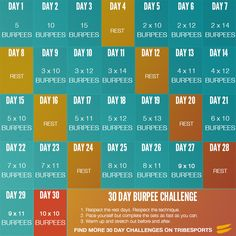 30 Day Burpee Challenge -Tribesports  My vision is to help people live healthy, fulfilling lives...on and off line. Visit http://VibrantExistence.com