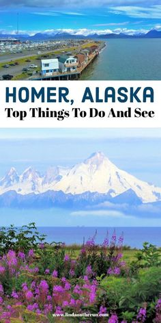 These unique things to do in Homer Alaska will help you plan your visit to Homer! From free to fun, there are so many things to do in Homer during your trip! Usa Travel Guide, New Travel, Travel Usa, Travel Guides, Travel Tips, Vacation Travel, Family Travel, Alaska Travel, Canada Travel