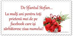 De Sfantul Stefan ... La multi ani pentru toti prietenii mei de pe facebook care isi sarbatoresc ziua numelui! Happy Valentine's Day Friend, Happy Valentines Day, Special Events, Letter Board, Facebook, Victoria, Birthday, Google, Image