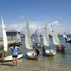 Sabot class, Alamitos Bay, Long Beach CA