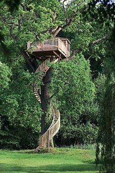 Treehouses you wish in your backyard