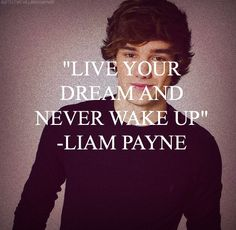 Day 8!!! Haven't done this in forever and I feel terrible about it... So this is my favorite Liam quote. A adore Liam and how incredibly sweet he is and this just inspires hope in dreams. :)