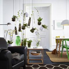 Bring the outside in with a hanging garden.Featured Products  STOCKHOLM IKEA PS 2012 LÖNSAM BLADET BLADET ASKER (Source: everyday.ikea.com)