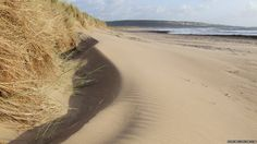 Merthyr Mawr dunes near Bridgend, South Wales, UK - Parts of the 1962 Hollywood blockbuster, Lawrence of Arabia starring Peter O'Toole were filmed in the dunes at Merthyr Mawr near Bridgend - the second largest dune system in Europe. - by Duncan Ludlow CCW