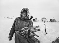 Siberia by Sebastião Salgado For his latest epic project, Genesis, photographer Sebastião Salgado spent eight years documenting parts of the world untainted by modern life. Here, he shares the images he took of the nomadic Nenets of northern Siberia Ansel Adams, Documentary Photographers, Best Photographers, Yin Yang, Reindeer Meat, Siberia, Inspiration Artistique, Contemporary Photographers, Magnum Photos