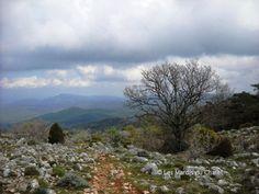 Rando Riboux,rando Cretes de la Sainte Baume,Traces GPS sainte baume
