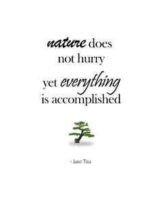 Everything is always accomplished in the end. #LaoTzu #Tao #Nature