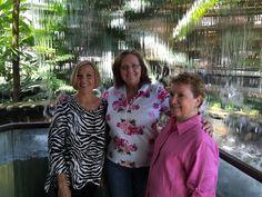 Kay, Faye, Barb 2016 Butterflies in the Garden