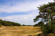 Hanzesteden Gelderland - Arnhem - Veluwe