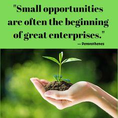 Monday Morning Motivation Monday Morning Motivation, Opportunity, Positivity, Mood, Quotes, Plants, Inspiration, Quotations, Biblical Inspiration