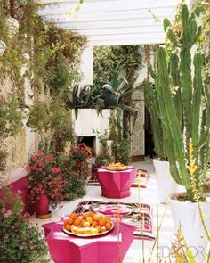 cactus garden patio with the pink tables/stools and Suzani throws