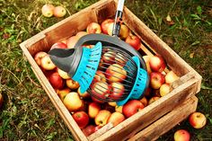 Its apple season and picking up windfall has never been easier! 🍎 Pick up your apples with the GARDENA Fruit Collector and you wont have to bend down an inch! Check our stories for more harvest know-how. Apple Season, Shops, Harvest Season, Apple Tree, Gardening Tips, Garden Tools, Fruit, Products, Tips And Tricks