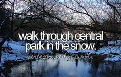 walk through central park in the snow