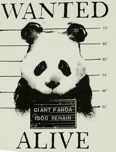Reward: your grandchildren and great grandchildren will know what a panda is!
