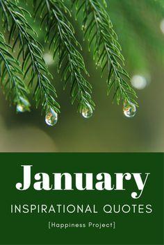January Inspirational Quotes  #quotes #inspirationalquote  #wisdom #nourishednow