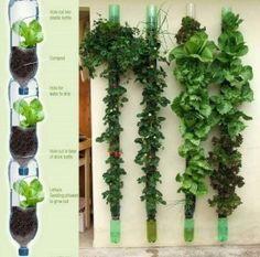 DIY: a vertical herb garden on your balcony