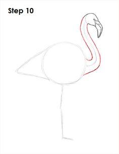 Flamingo Bird Drawing 10