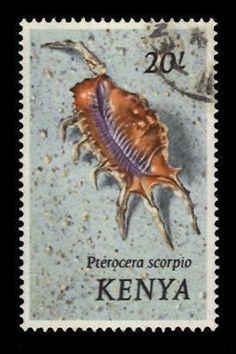 Kenya 20 Shillings Scorpion Shell 1971